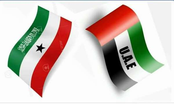 Breaking News Uae Has Accepted Somaliland Passport Welcome To Africa Times