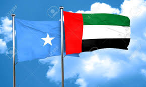 The United Arab Emirates (UAE) is ending a military training programme in Somalia and also sanctioned all government authorities, in response to the seizure of millions of dollars …